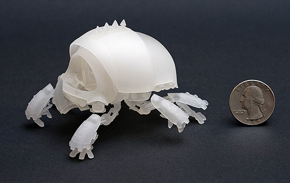 Scarab resin print, side view